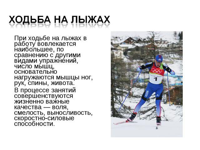 Презентация на тему Лыжная подготовка  При ходьбе на лыжах в работу вовлекается наибольшее по сравнению с другими