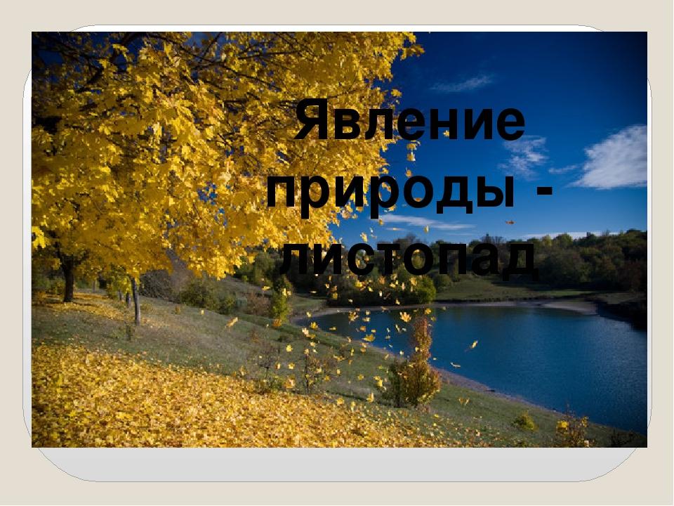 Явление природы - листопад