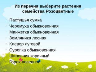 Из перечня выберите растения семейства Розоцветные Пастушья сумка Черемуха об