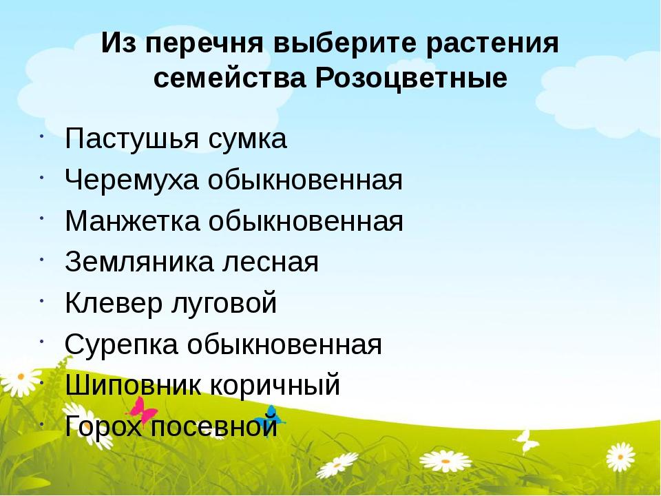 Из перечня выберите растения семейства Розоцветные Пастушья сумка Черемуха об...