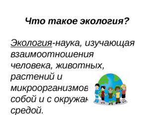 Что такое экология? Экология-наука, изучающая взаимоотношения человека, живот