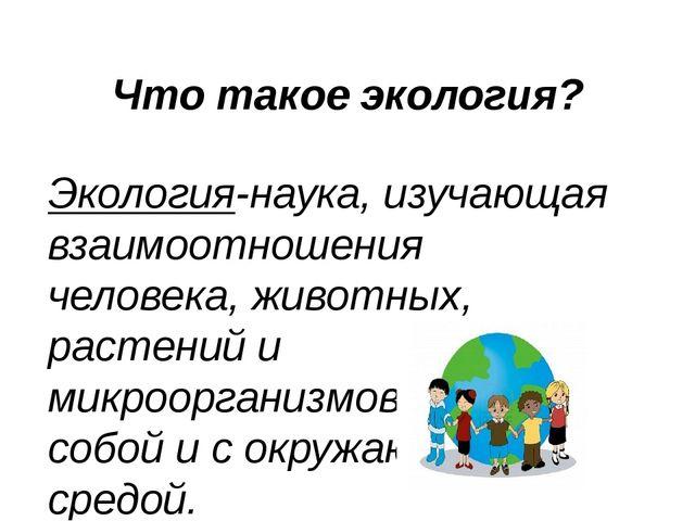 Что такое экология? Экология-наука, изучающая взаимоотношения человека, живот...