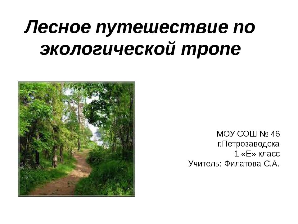 Лесное путешествие по экологической тропе МОУ СОШ № 46 г.Петрозаводска 1 «Е»...