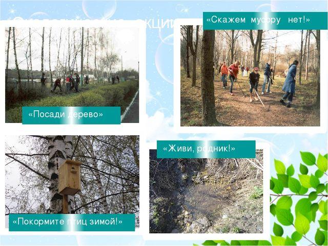 Экологические акции: • «Скажем мусору нет!» «Посади дерево» «Живи, родник!»...