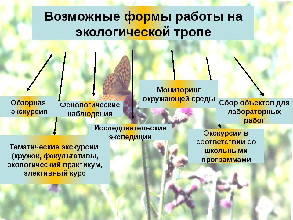 Возможные формы работы на экологической тропе Обзорная экскурсия Тематические...
