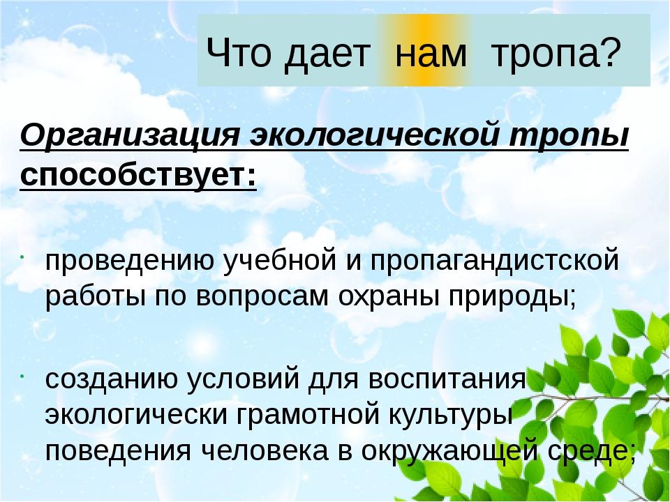 Организация экологической тропы способствует: проведению учебной и пропаганди...