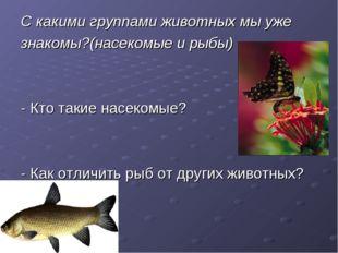 С какими группами животных мы уже знакомы?(насекомые и рыбы) - Кто такие насе
