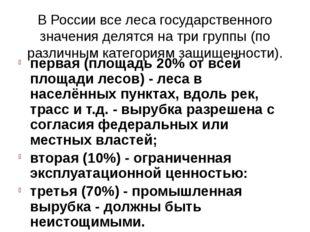 В России все леса государственного значения делятся на три группы (по различн