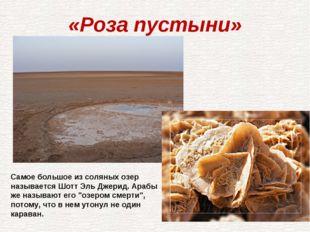 «Роза пустыни» Самое большое из соляных озер называется Шотт Эль Джерид. Араб
