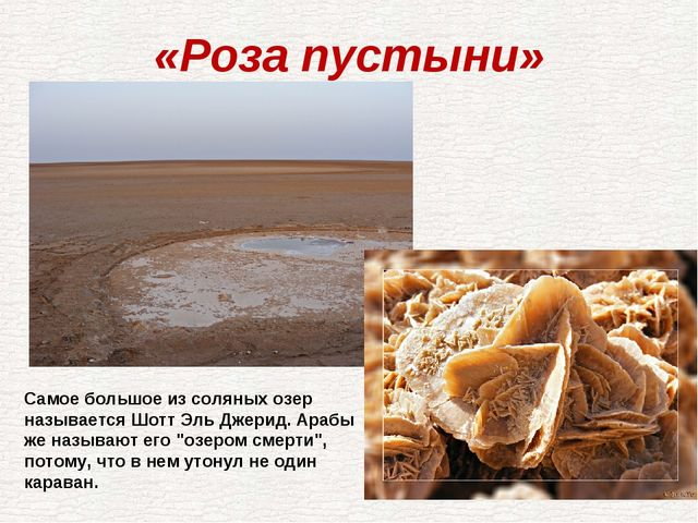 «Роза пустыни» Самое большое из соляных озер называется Шотт Эль Джерид. Араб...