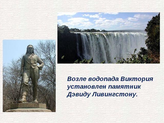 Возле водопада Виктория установлен памятник Дэвиду Ливингстону.