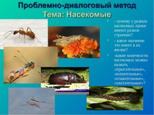 - почему у разных насекомых лапки имеют разное строение? - какое значение это