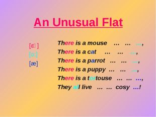 An Unusual Flat There is a mouse … … …, There is a cat … … …, There is a parr