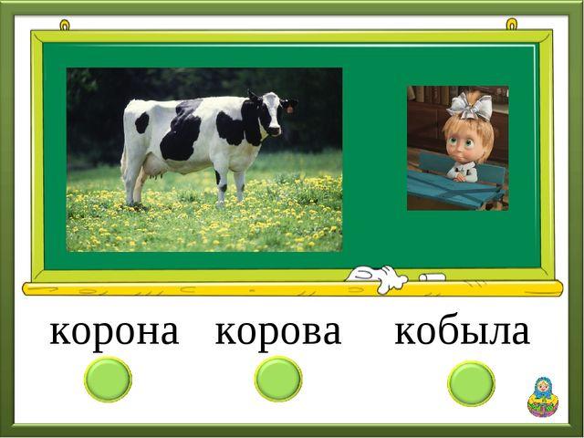 корона кобыла корова