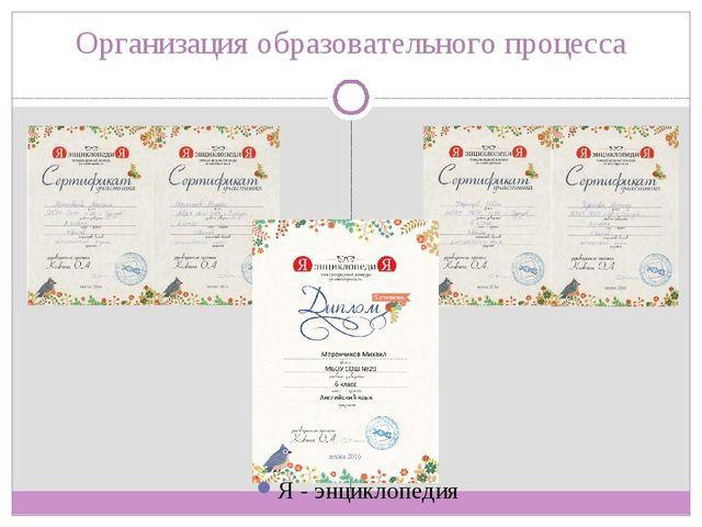 Организация образовательного процесса Я - энциклопедия