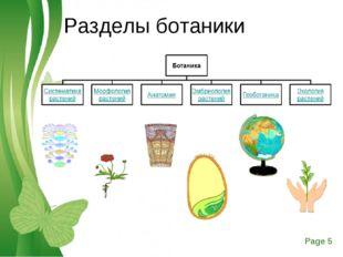 Разделы ботаники Free Powerpoint Templates Page *