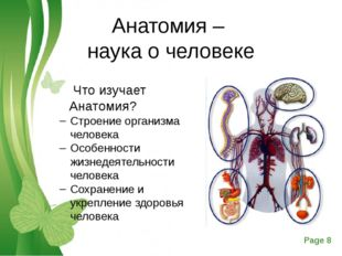 Анатомия – наука о человеке Что изучает Анатомия? Строение организма человека
