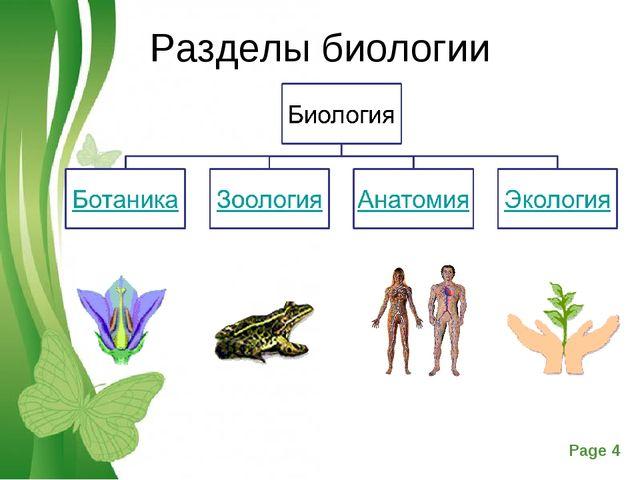 Разделы биологии Free Powerpoint Templates Page *