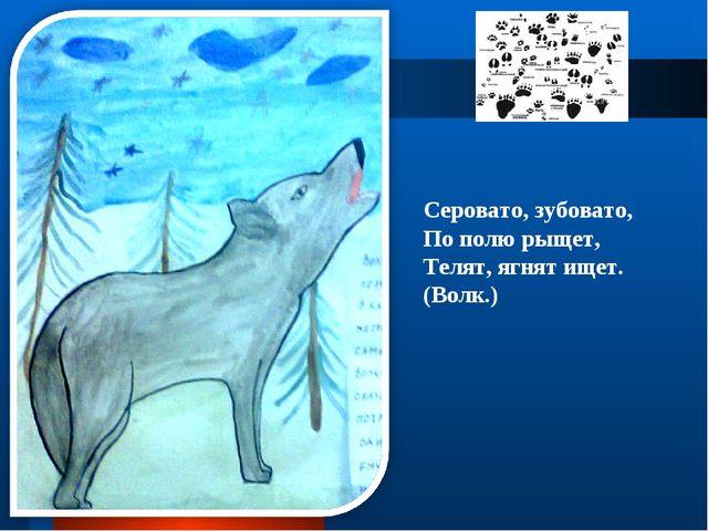 Серовато, зубовато, По полю рыщет, Телят, ягнят ищет. (Волк.)