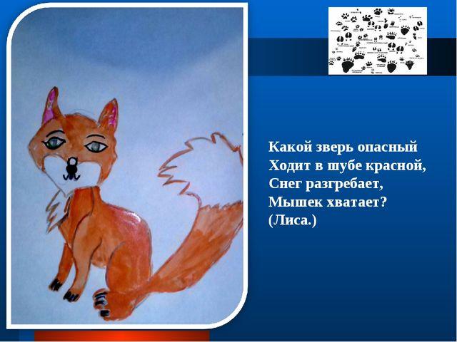 Какой зверь опасный Ходит в шубе красной, Снег разгребает, Мышек хватает? (Ли...