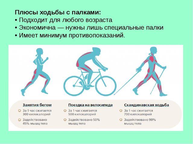 Плюсы ходьбы с палками: • Подходит для любого возраста • Экономична — нужны л...