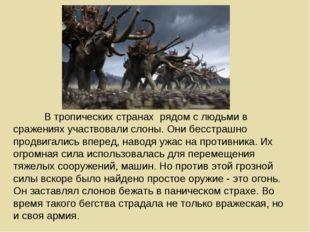 В тропических странах рядом с людьми в сражениях участвовали слоны. Они бесс