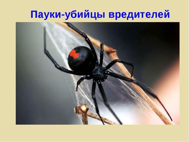 Пауки-убийцы вредителей