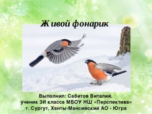 Выполнил: Сабитов Виталий, ученик 3И класса МБОУ НШ «Перспектива» г. Сургут,