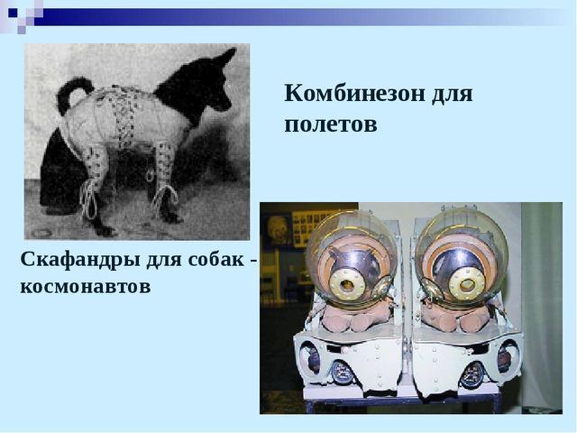 Комбинезон для полетов Скафандры для собак - космонавтов