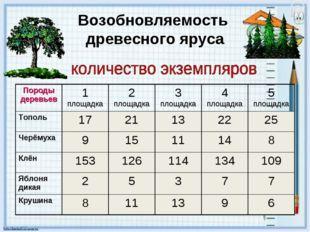 Возобновляемость древесного яруса Породы деревьев1 площадка2 площадка3 пло