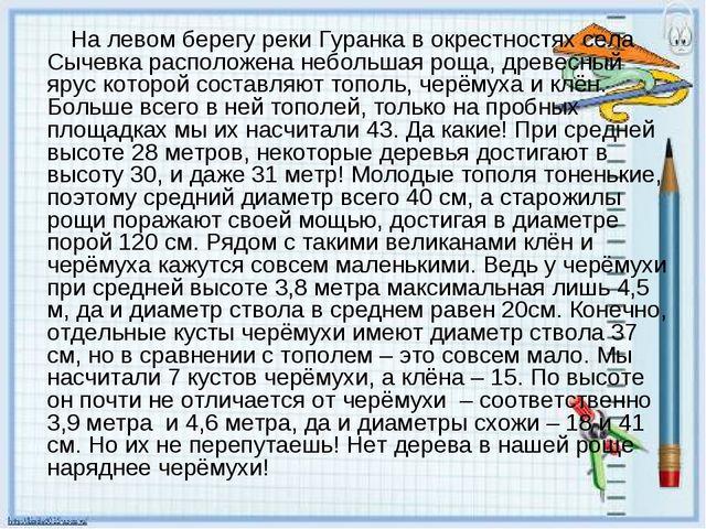 На левом берегу реки Гуранка в окрестностях села Сычевка расположена небольш...