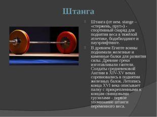 Штанга Штанга (от нем. stange – «стержень, прут») - спортивный снаряд для под