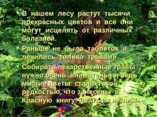 В нашем лесу растут тысячи прекрасных цветов и все они могут исцелять от разл
