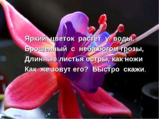 Яркий цветок растёт у воды, Брошенный с неба богом грозы, Длинные листья остр