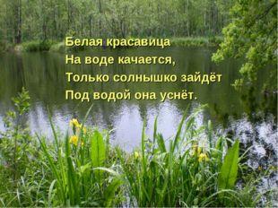 Белая красавица На воде качается, Только солнышко зайдёт Под водой она уснёт.
