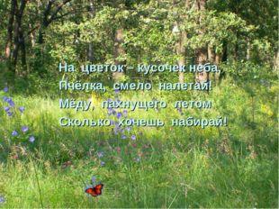 На цветок – кусочек неба, Пчёлка, смело налетай! Мёду, пахнущего летом Скольк