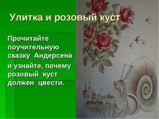 Улитка и розовый куст Прочитайте поучительную сказку Андерсена и узнайте, поч