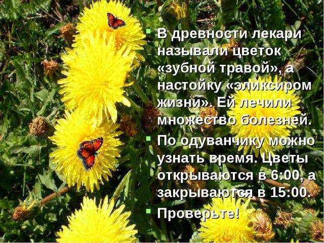В древности лекари называли цветок «зубной травой», а настойку «эликсиром жиз...