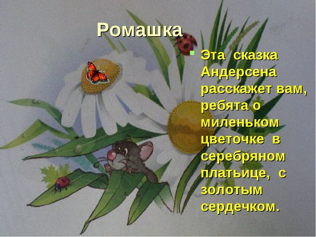 Ромашка Эта сказка Андерсена расскажет вам, ребята о миленьком цветочке в сер...