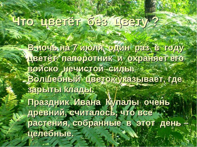 Что цветёт без цвету ? В ночь на 7 июля один раз в году цветёт папоротник и о...