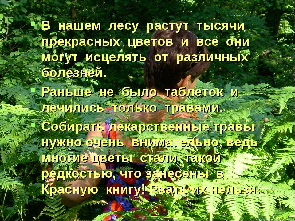 В нашем лесу растут тысячи прекрасных цветов и все они могут исцелять от разл...