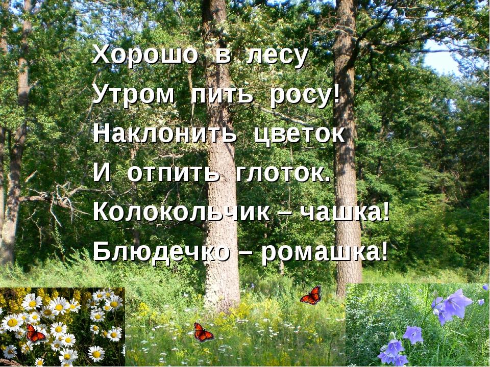 Хорошо в лесу Утром пить росу! Наклонить цветок И отпить глоток. Колокольчик...