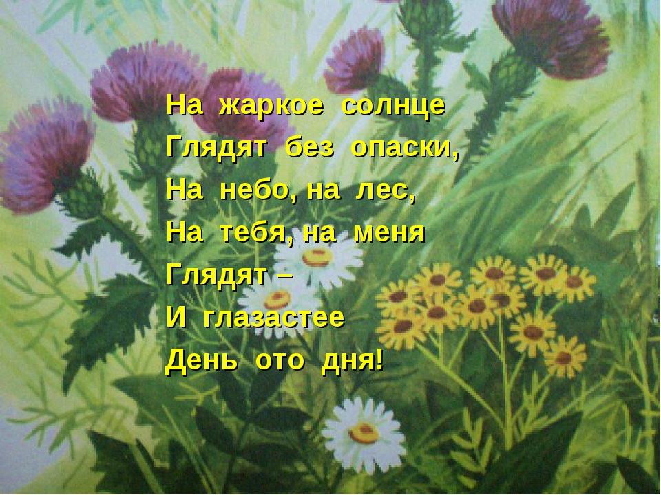 На жаркое солнце Глядят без опаски, На небо, на лес, На тебя, на меня Глядят...