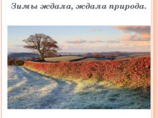 Зимы ждала, ждала природа.