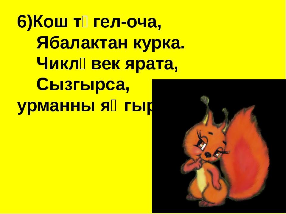 6)Кош түгел-оча,  Ябалактан курка. Чикләвек ярата, Сызгырса, урман...