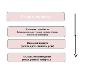 Язык человека Языковая способность (языковая компетенция, память языка, языко