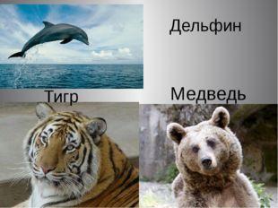 Тигр Дельфин Медведь