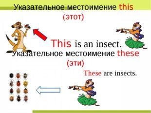 This is an insect. Указательное местоимение this (этот) Указательное местоиме