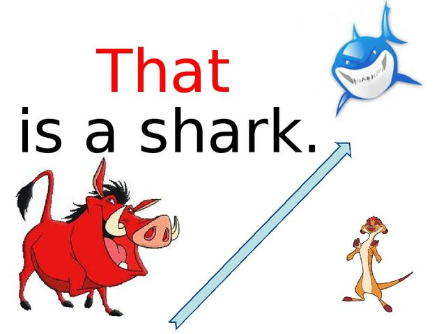 is a shark. That