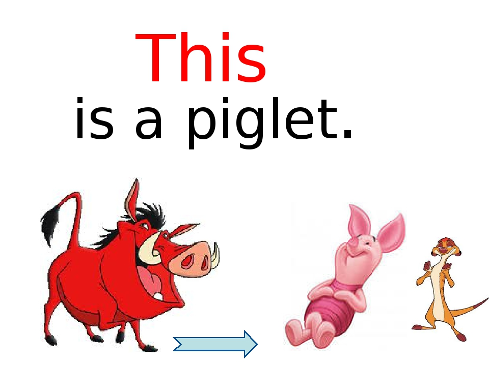 is a piglet. This